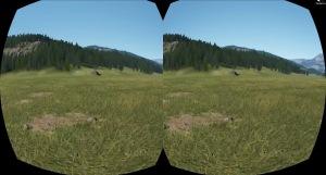 Oculus view